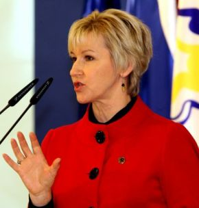 zweedse minister