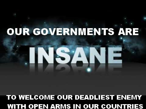 insane (1)
