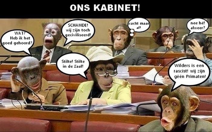 kabinet1