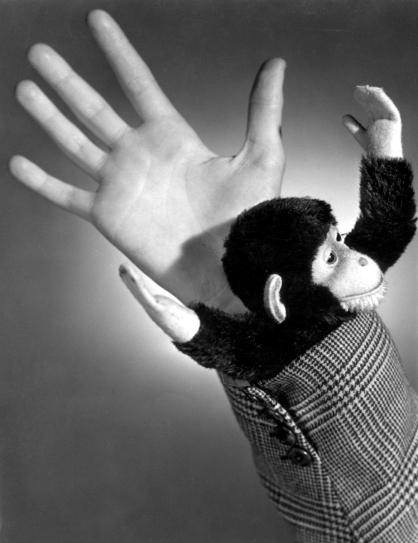 7836 Spreekwoorden en gezegdes: De aap uit de mouw