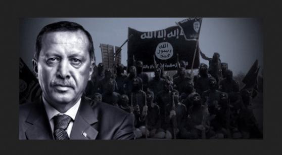 erdogan.zw.wit