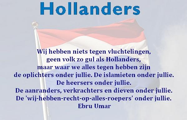 vlag.holland