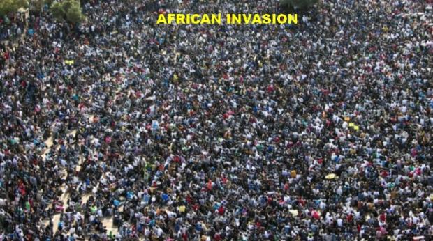 afrikaanse.tsunami