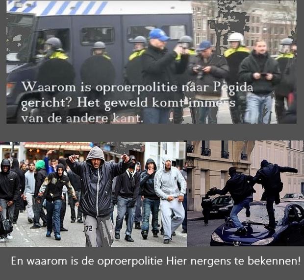 oproerpolitie