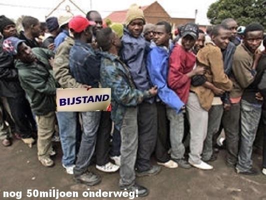 afrikaanse-asiel