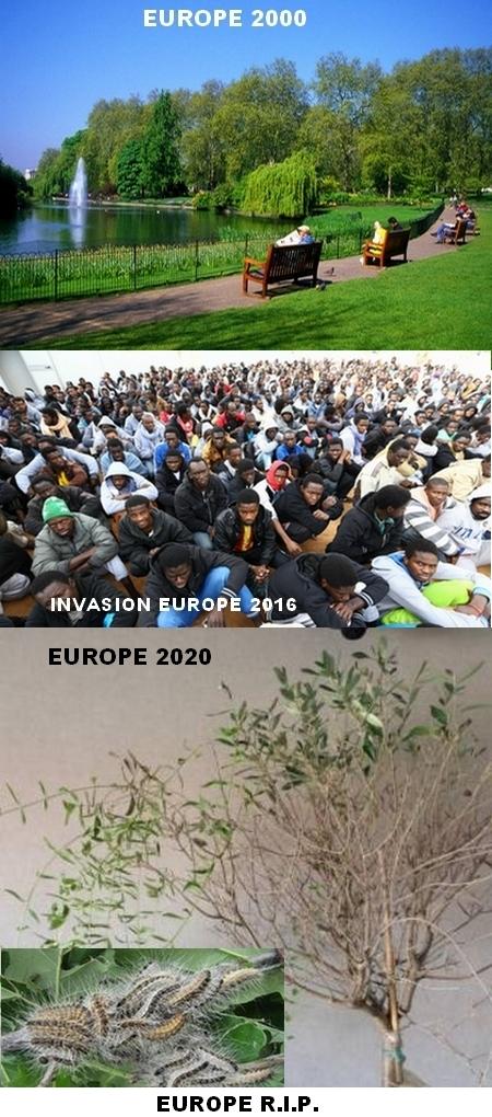 europe-future