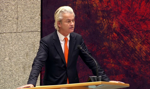 screen-wilders