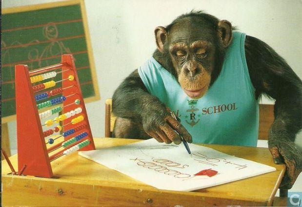 aap-school
