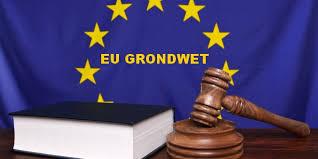 Afbeeldingsresultaat voor eu-grondwet